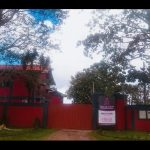 Clinica Para Recuperação de Mulheres Dependentes Químicos - Mato Grosso MT - Grupo Aliança Pela Vida
