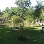 Clinica de Recuperação em Minas Gerais | Grupo Aliança Pela Vida